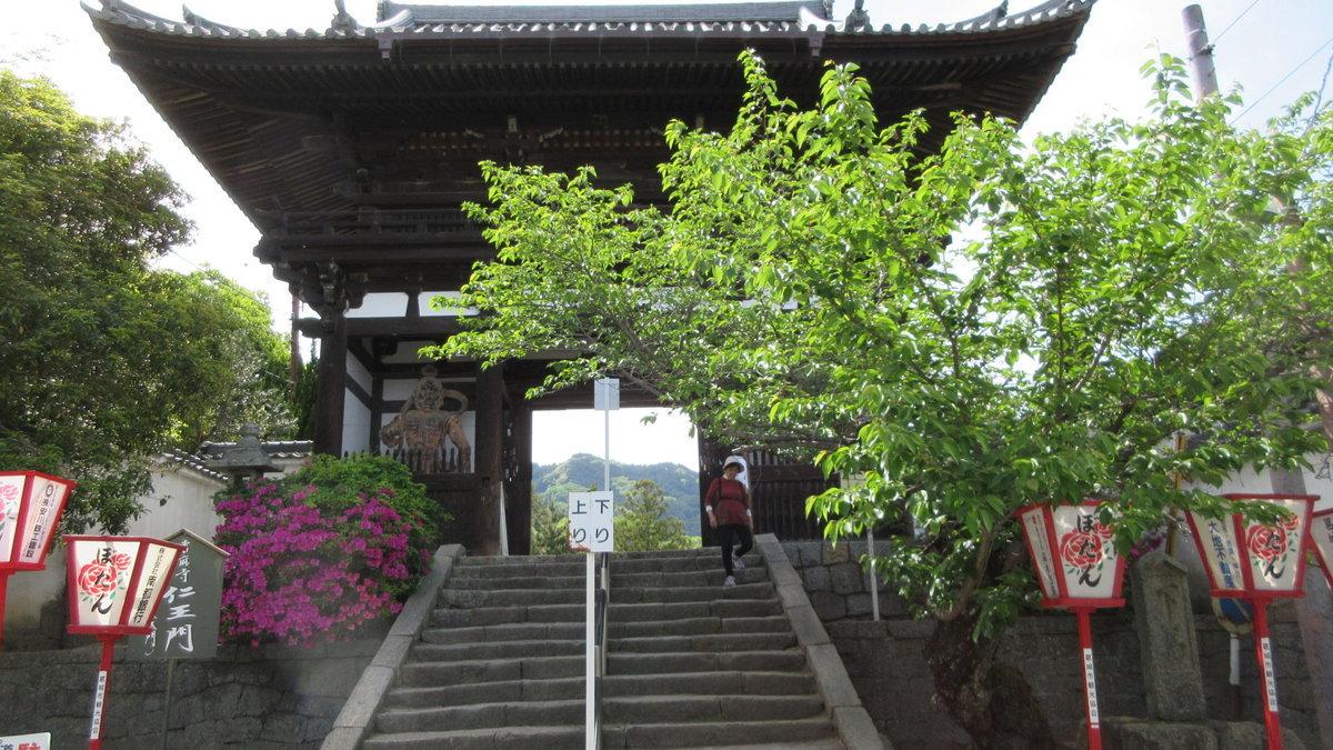 1705-48-二上山-IMG_0308