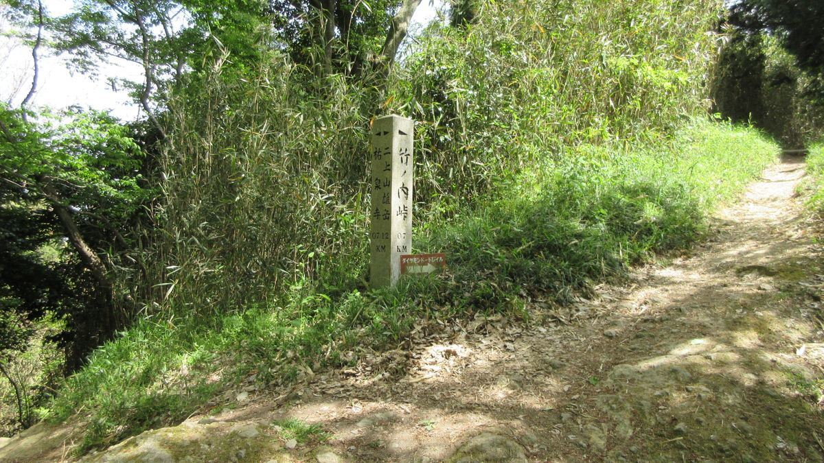 1705-37-二上山-IMG_0284