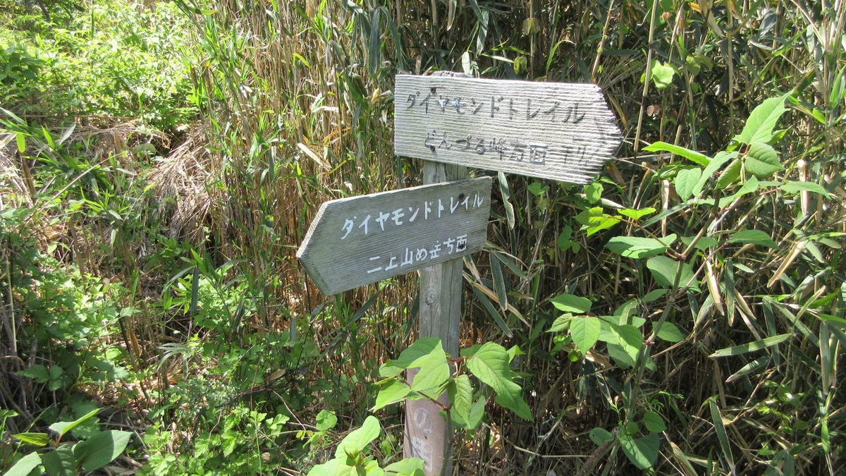 1705-20-二上山-IMG_0246