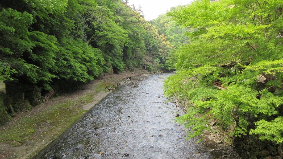 1705-29-愛宕山-IMG_0375