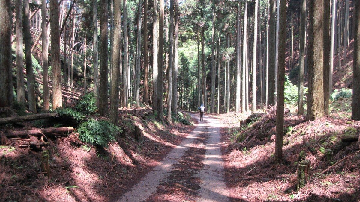 1705-26-愛宕山-IMG_0369