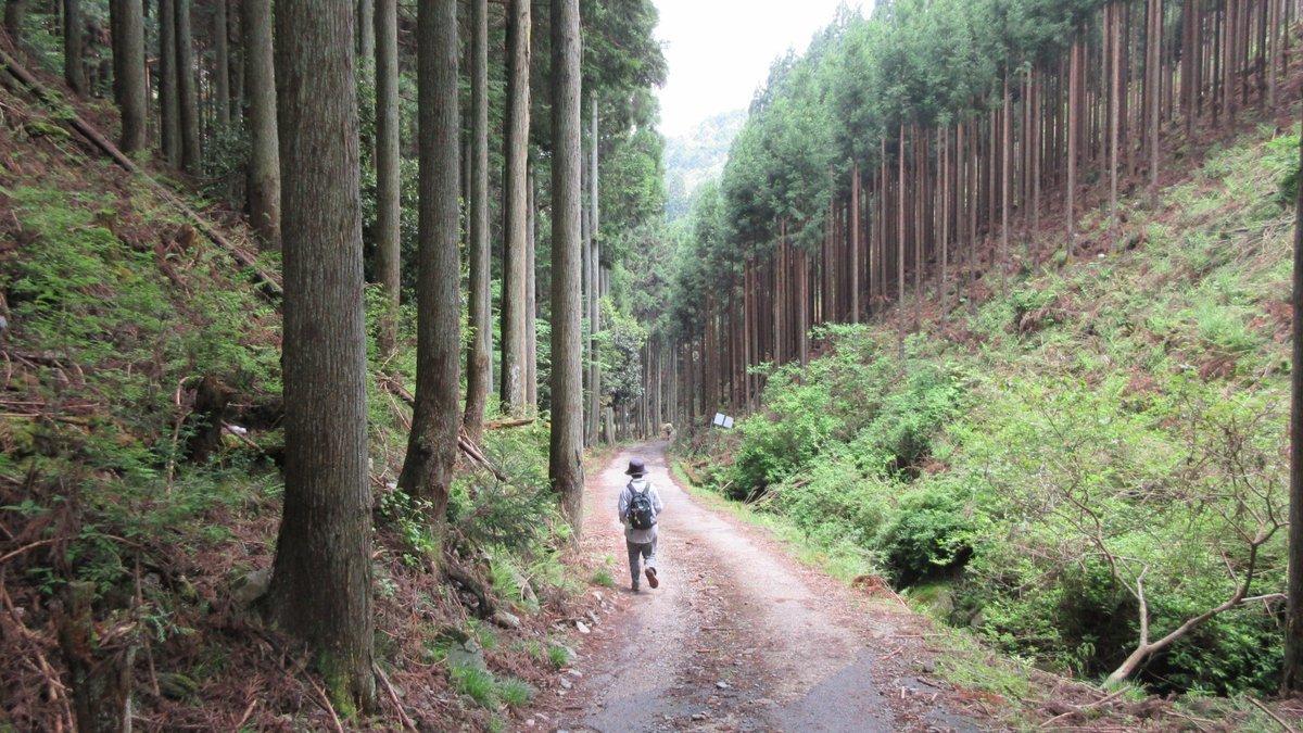 1705-25-愛宕山-IMG_0368