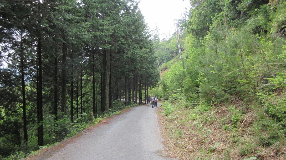 1705-24-愛宕山-IMG_0365
