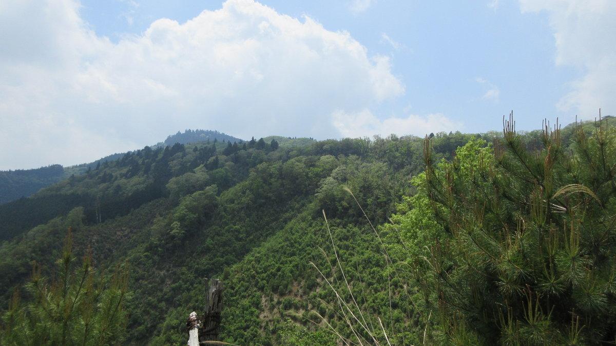 1705-23-愛宕山-IMG_0363
