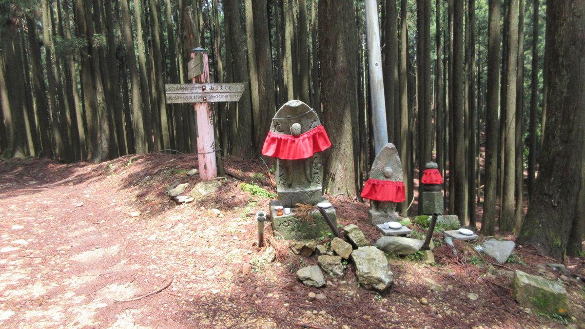 1705-19-愛宕山-IMG_0355