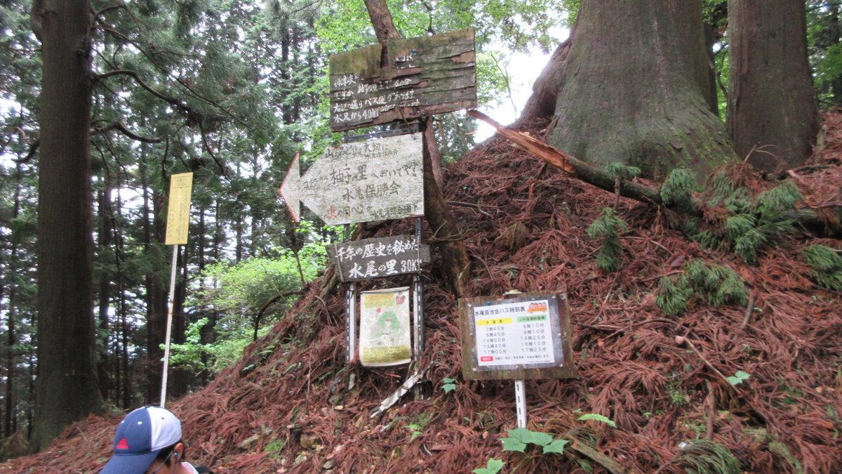 1705-10-愛宕山-IMG_0337