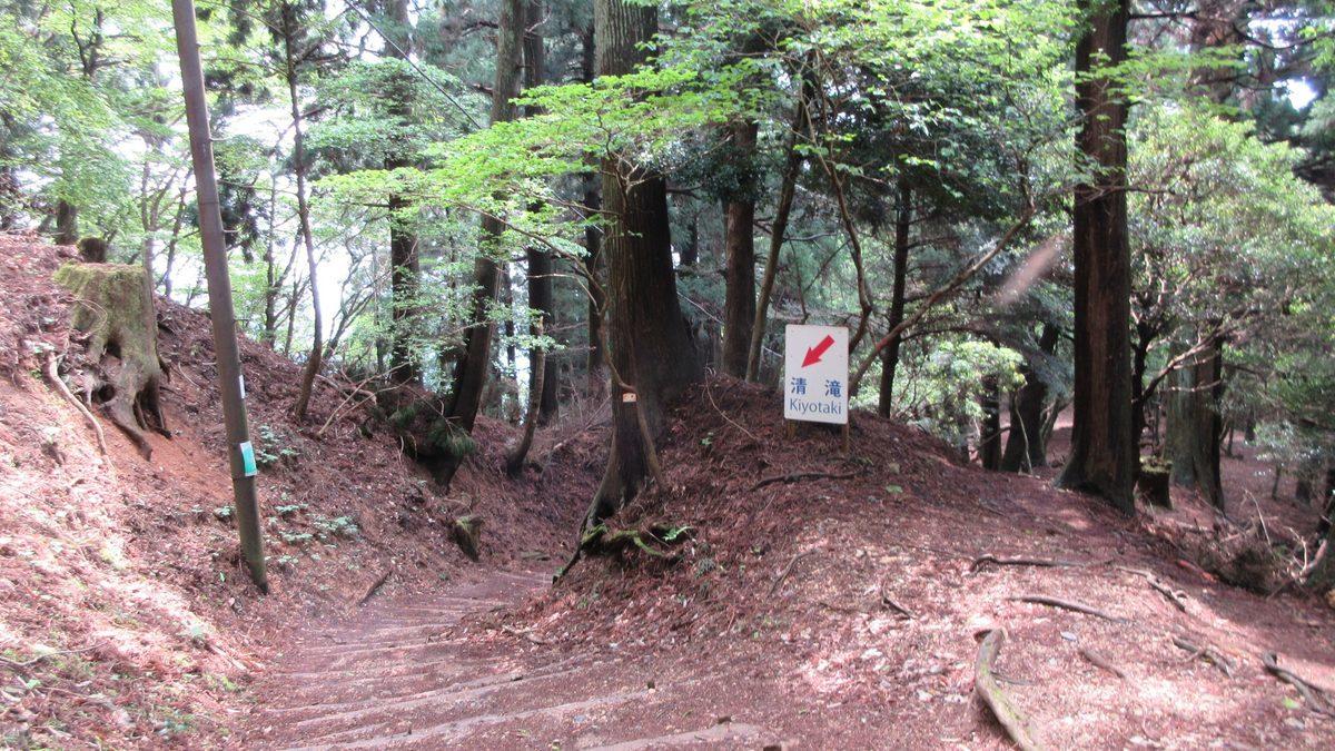 1705-08-愛宕山-IMG_0335