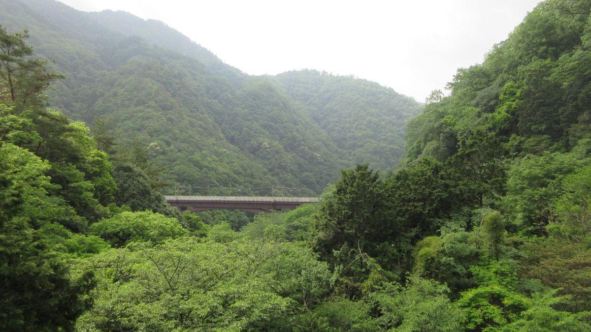 1705-03-愛宕山-IMG_0325
