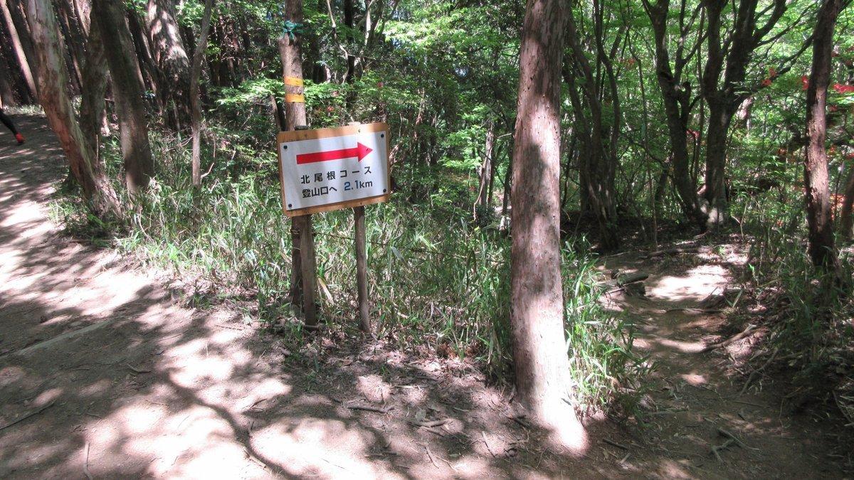 1705-39-葛城山-IMG_0452
