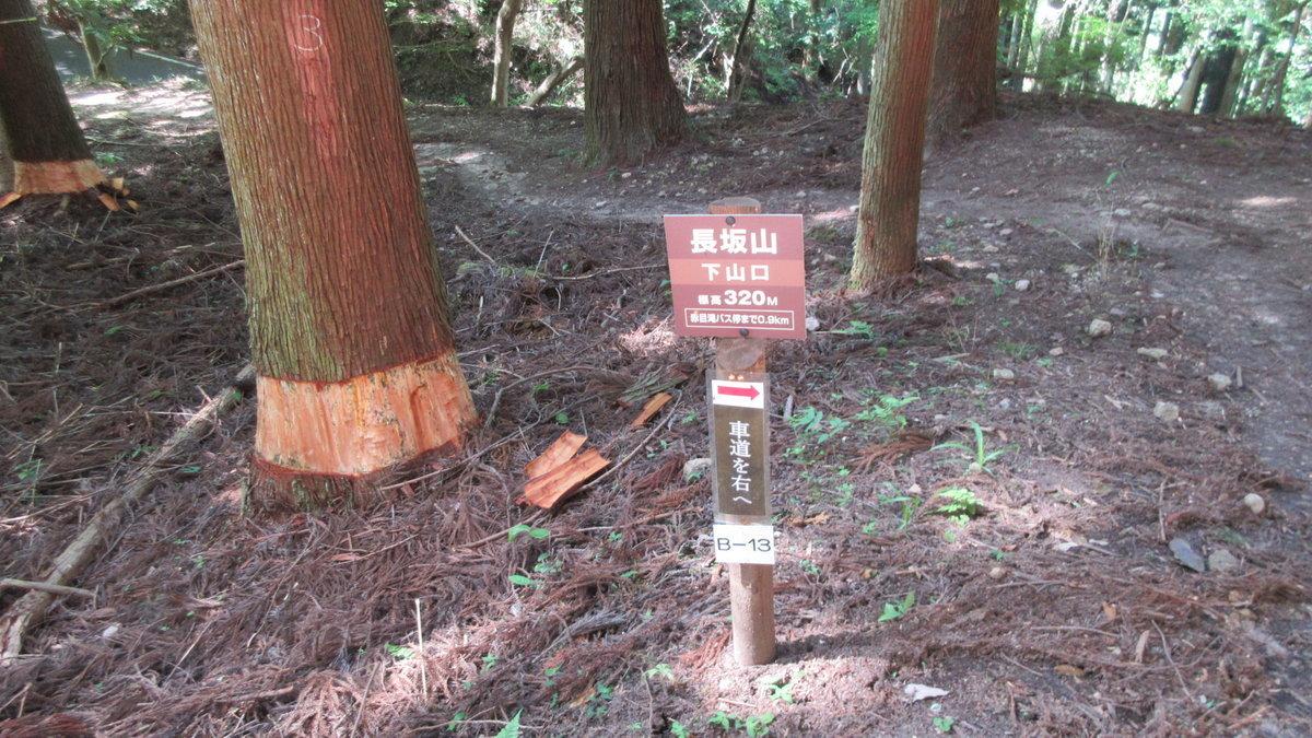 1706-56-赤目滝-IMG_0658