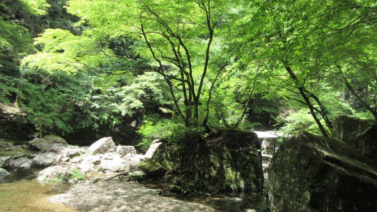 1706-36-赤目滝-IMG_0609