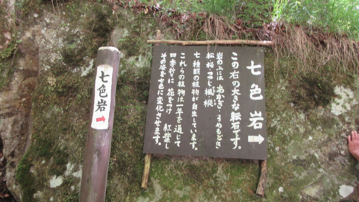 1706-35-赤目滝-IMG_0607