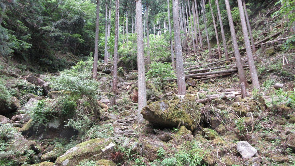1706-26-赤目滝-IMG_0586