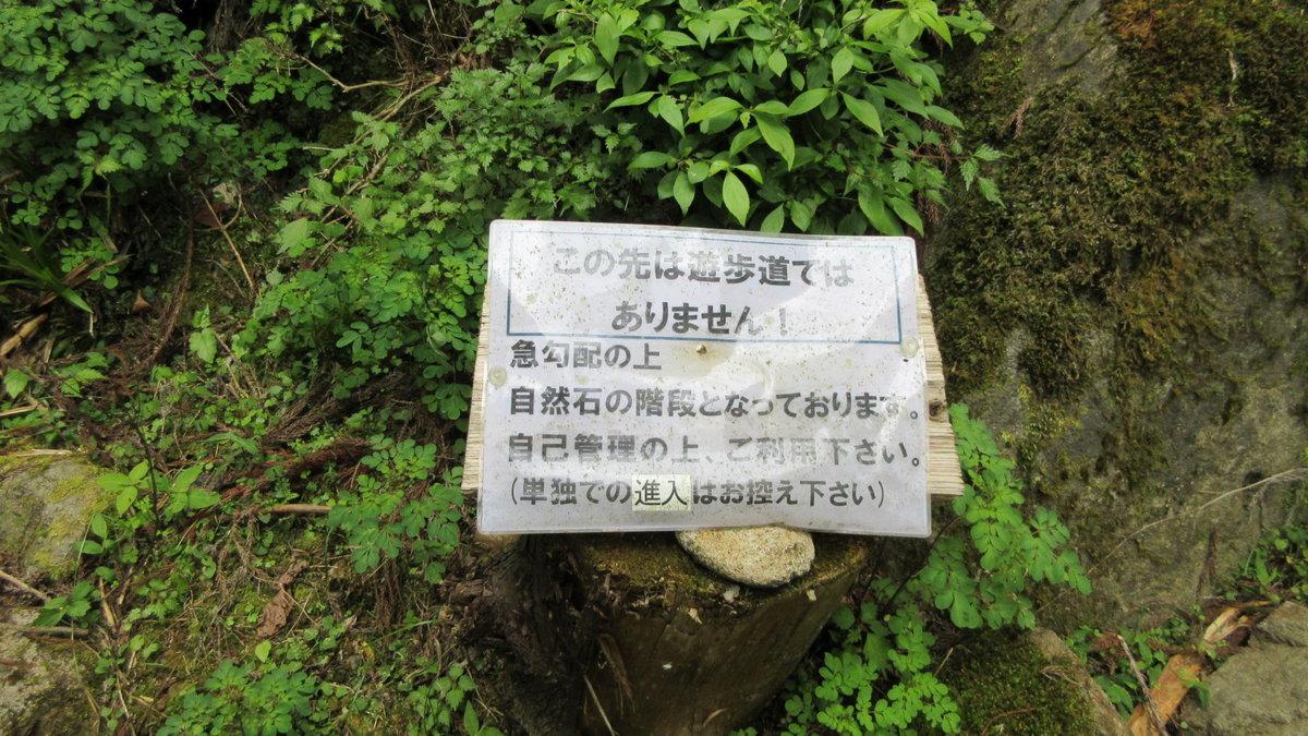 1706-25-赤目滝-IMG_0585