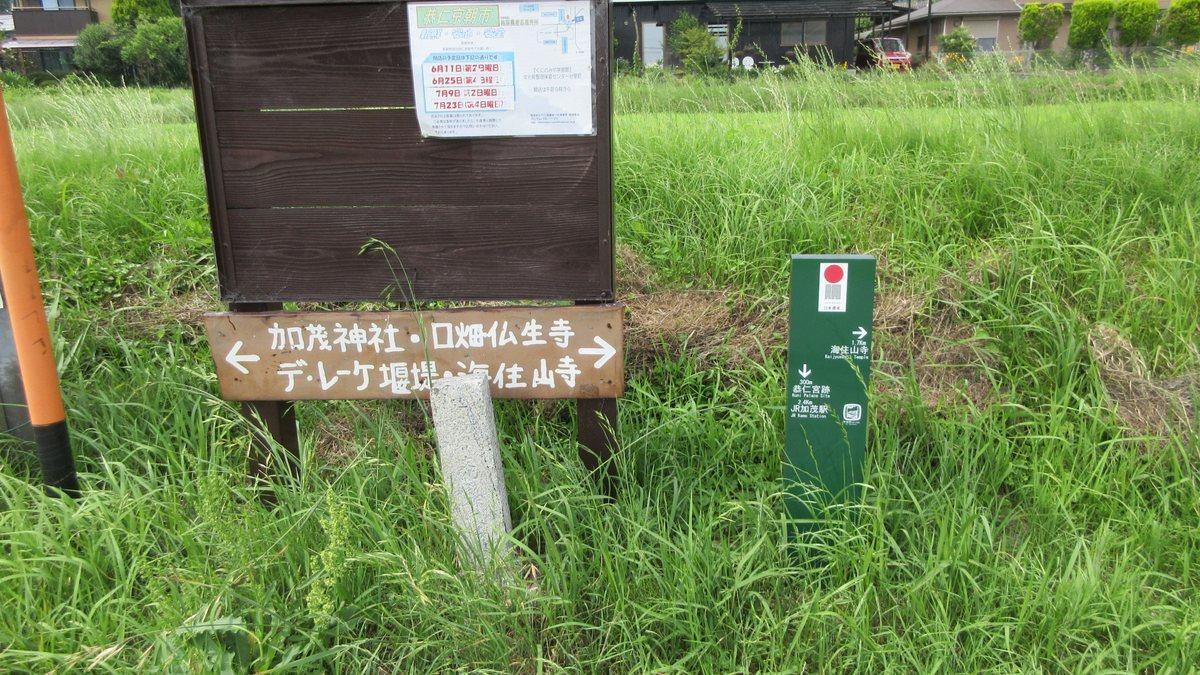 1706-13-海住山寺-IMG_0675