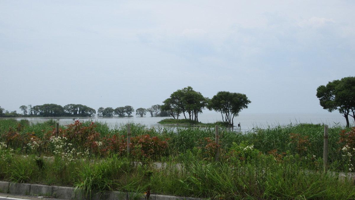 1707-11-琵琶湖⑥-IMG_0821