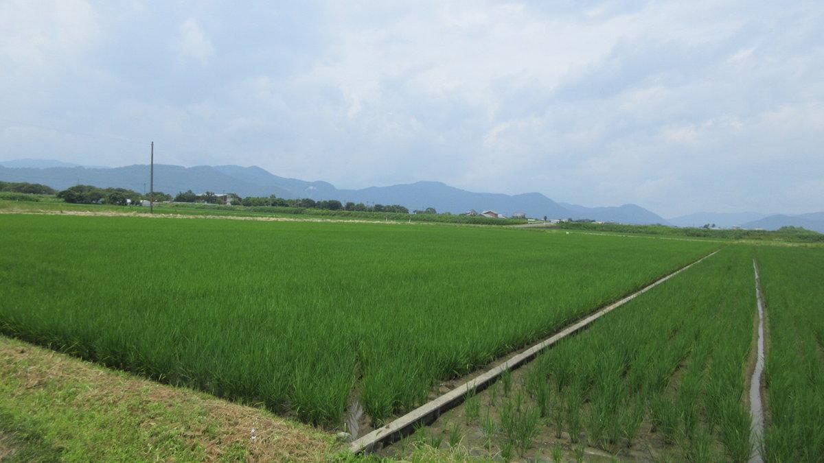1707-06-琵琶湖⑥-IMG_0815