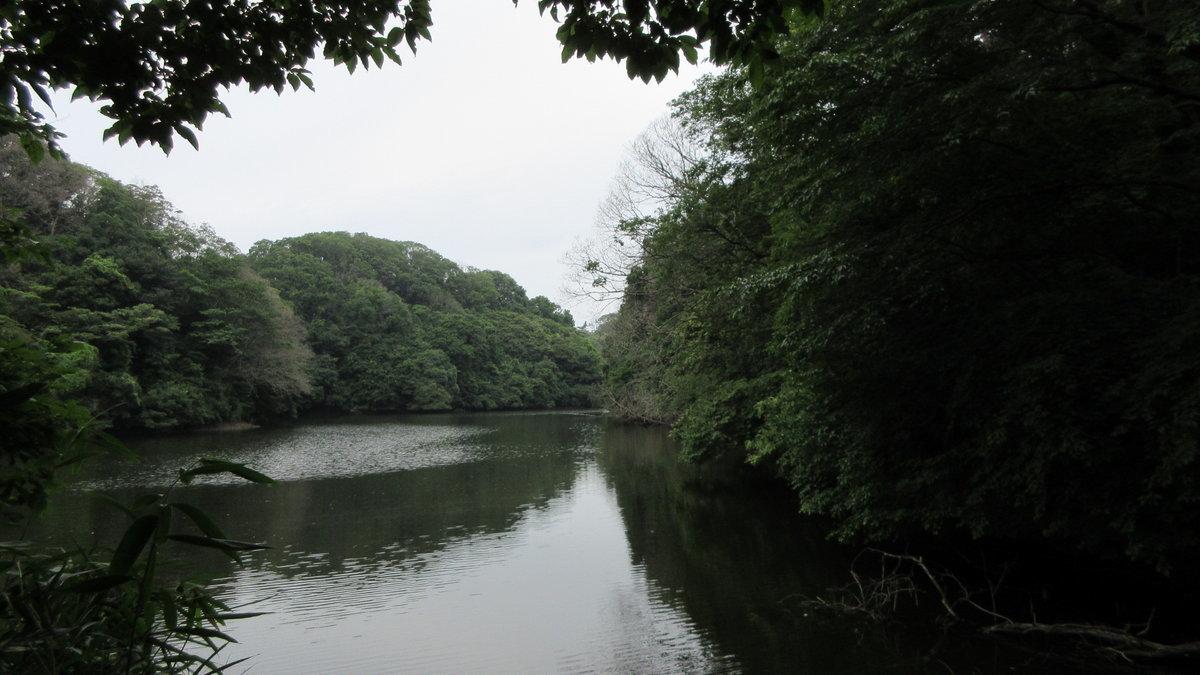 1707-27-生駒-IMG_0904