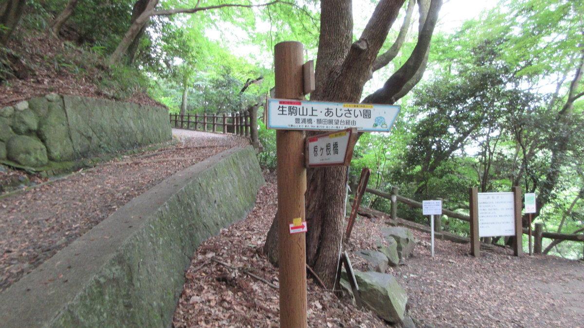 1707-09-生駒-IMG_0871
