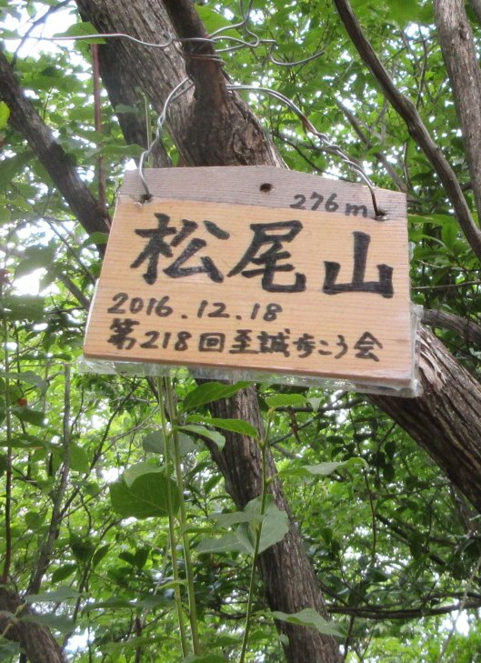 1708-15-清滝-IMG_1067 松尾山頂