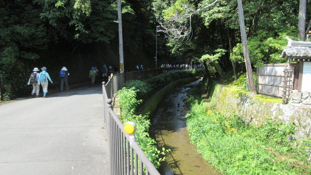 1708-06-清滝-IMG_1042
