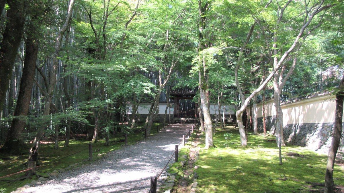 1708-03-清滝-IMG_1039