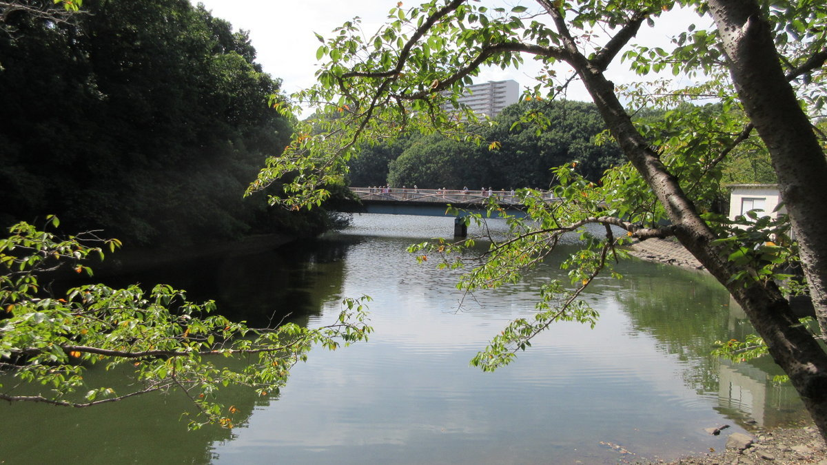 1709-03-五私鉄-IMG_1271