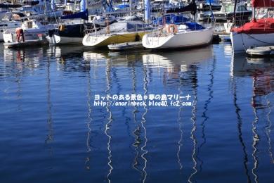 EOS6D_2014_12_23_9999_47.jpg