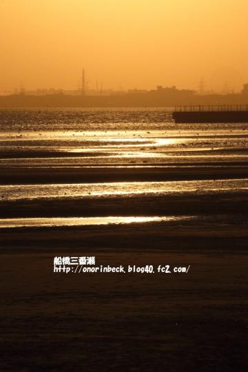 EOS6D_2015_02_15_9999_66.jpg