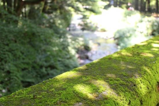 KaruizawaPottering_012_org.jpg