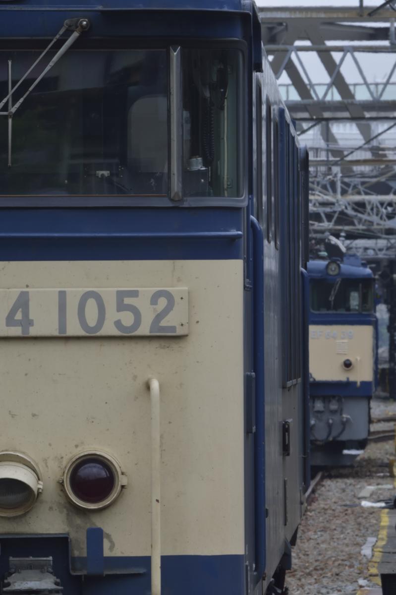 _DSC8065.jpg