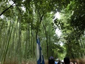 20150816_06竹の小径