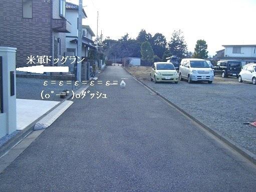 DSCF7705.jpg