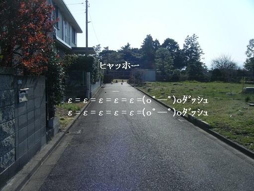 DSCF7925.jpg