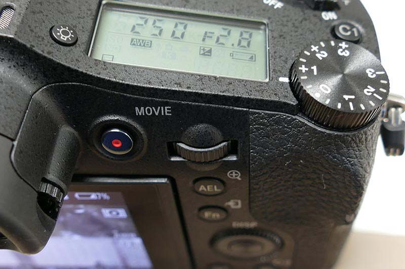 P1980895.jpg