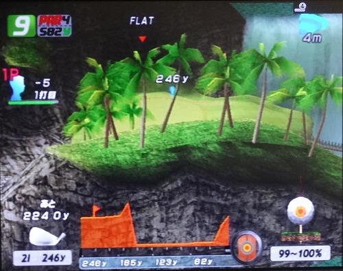 PS2エンジョイゴルフ シニアプロ以降 (9)