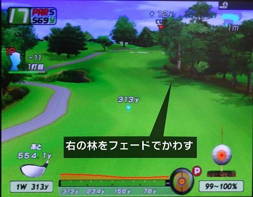 PS2エンジョイゴルフ シニアプロ以降 (14)