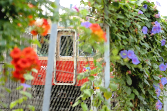 2015/8/9 阪神武庫川線 東鳴尾~洲先