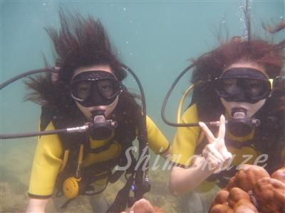 ピピアイランドで体験ダイビング
