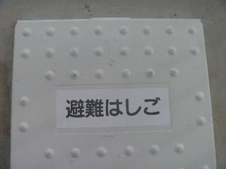 P1040395(1).jpg