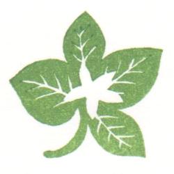 スイーツ持ち手用葉っぱに白い花