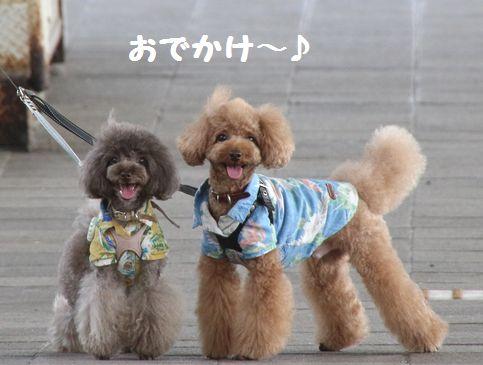 2015夏旅行~那須~