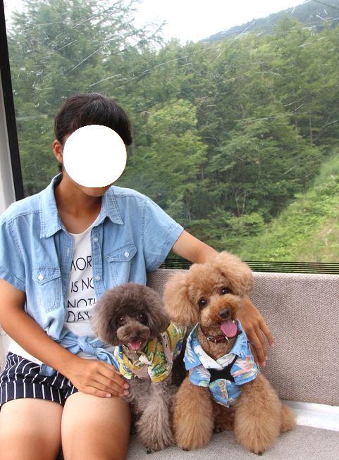 2015夏旅行~マウントジーンズ~