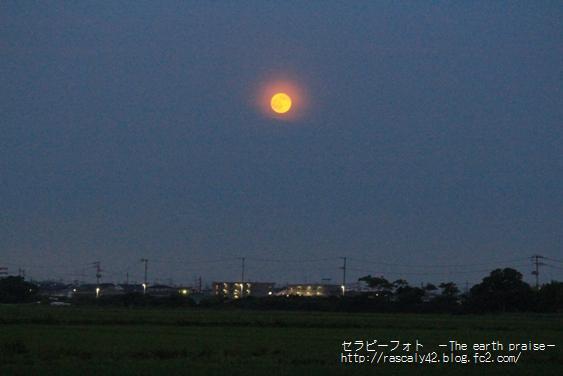 Photo therapy286満月の夜に-0717