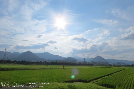 Photo therapy309台風一過-0809