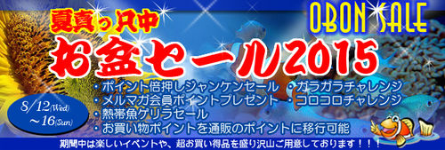 banner_obonsale-a843c.jpg
