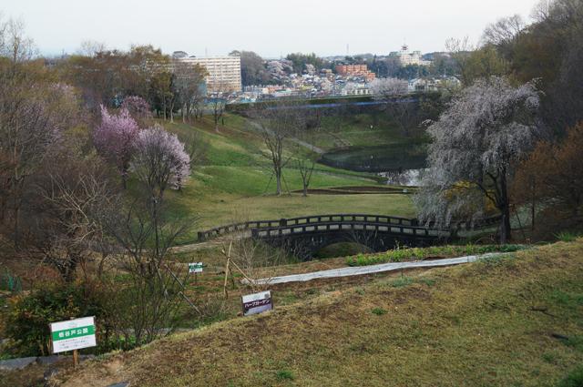 栃谷戸公園の春