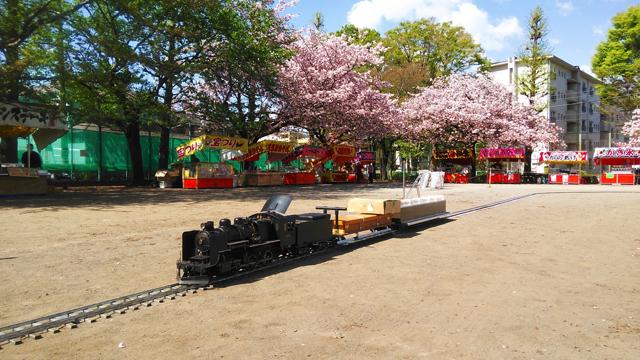 国立の桜とミニSL