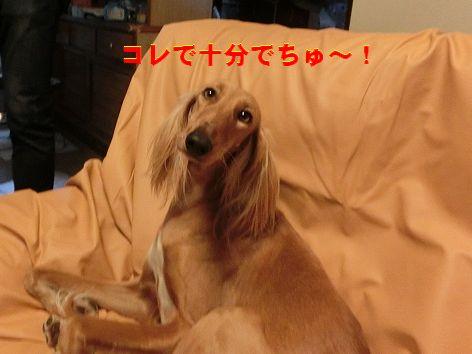 b_20141230011051435.jpg