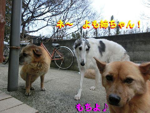 b_201501270119036ad.jpg